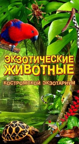 Афиша выставки Костромской экзотариум