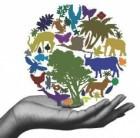Использование инфраструктуры Глобальной базы данных по биоразнообразию