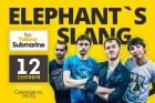 Elephants Slang