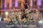 Новый год в Sheletoff