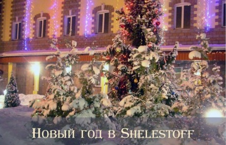 Афиша вечеринки Новый год в Sheletoff