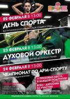 Чемпионат по армспорту