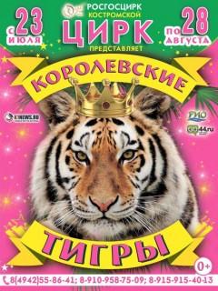 Королевские тигры