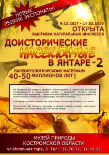 doistoricheskie-nasekomye-v-yantare 00