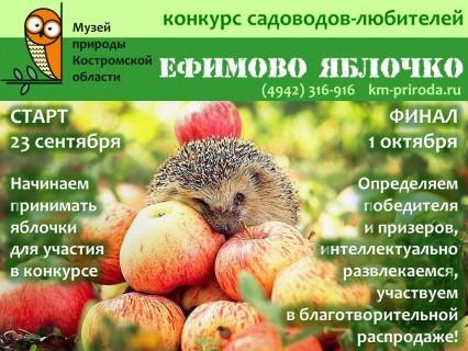 Ефимово яблочко