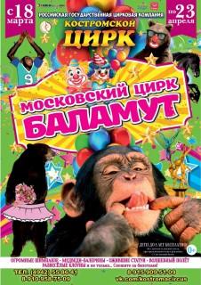 Московский цирк Баламут
