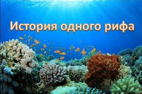 Афиша История одного рифа