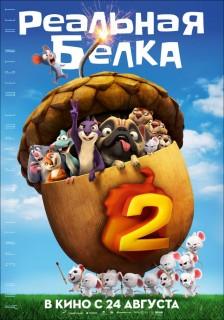 Постер Реальная белка 2
