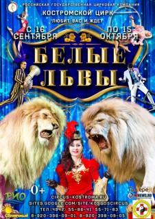 Афиша Белые львы