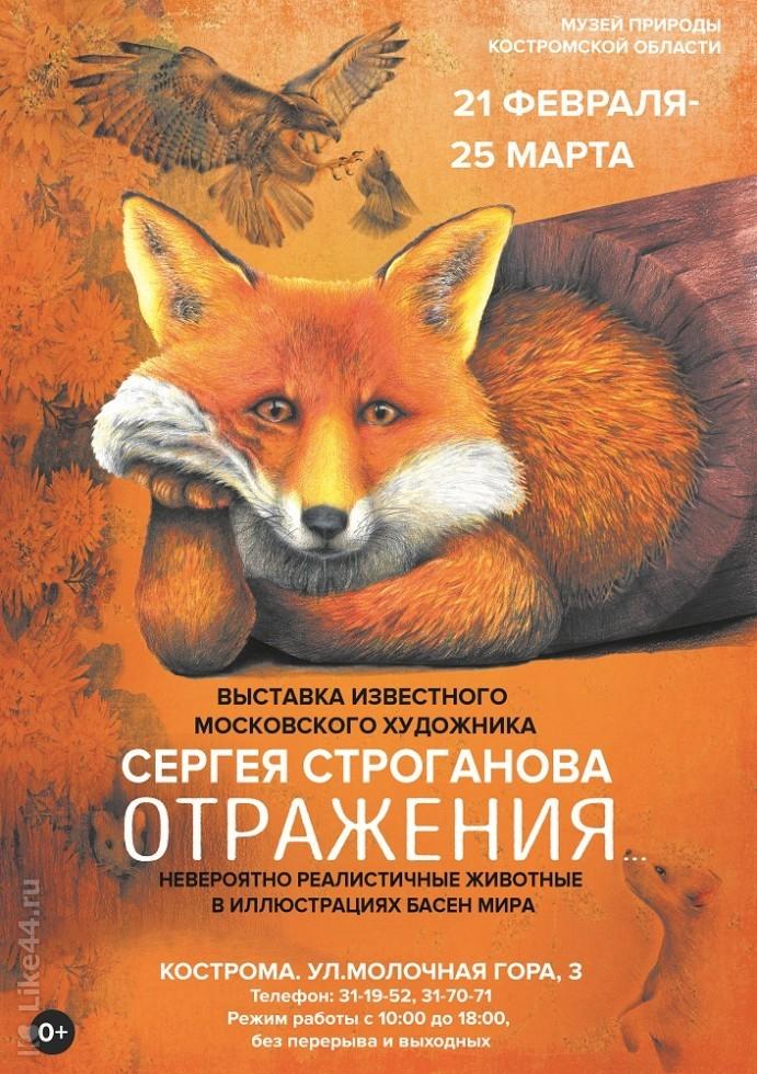 Сергей Строганов. Отражения