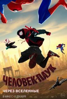 Постер Человек-паук: Через вселенные