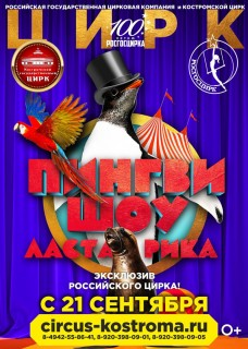 Пингви-шоу «Ласта-Рика»